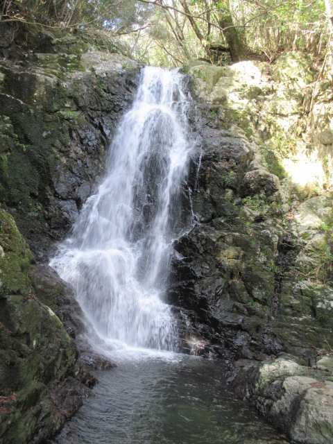 IMG7889JPG最上部の7の滝1