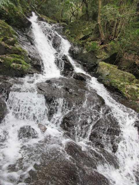 IMG7894JPG5の滝