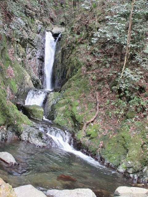 IMG7921JPG最下部の1の滝