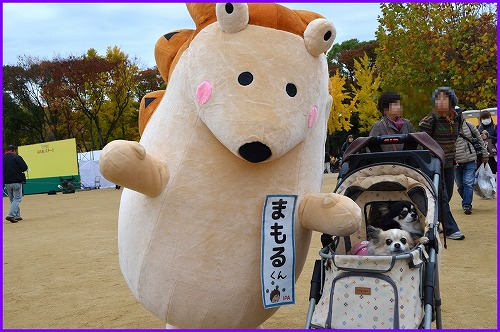 20161123OBC (4)