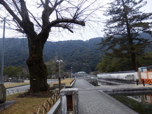 1.2吉香公園 (9)_resized