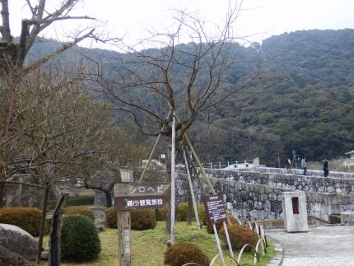 1.2吉香公園 (12)_resized