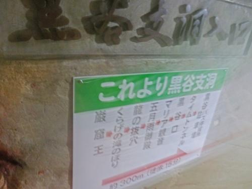 1.2秋芳洞 (38)_resized