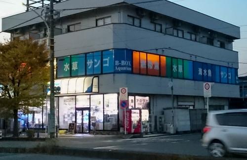 20161113_340.jpg