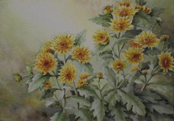 カクテルマム(黄) 1612