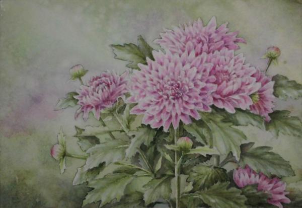 カクテルマム(ピンク) 1612