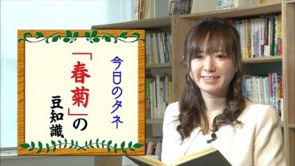 170209朝ダネ 春菊 紺野あさ美 (4)