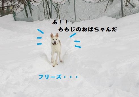 02IMG_0234.jpg