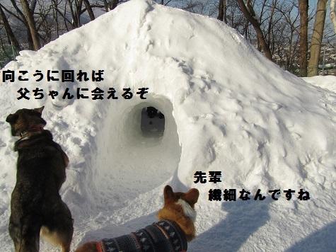 05170109IMG_0841.jpg