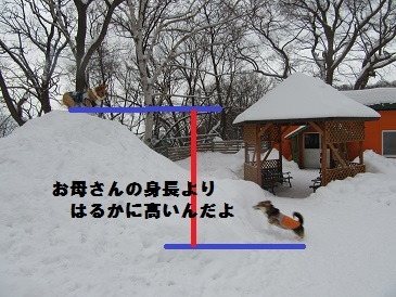 10170101IMG_0065.jpg