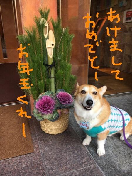 fc2blog_201701011140107af.jpg