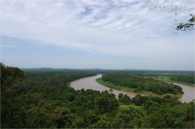 キナバタンガン河