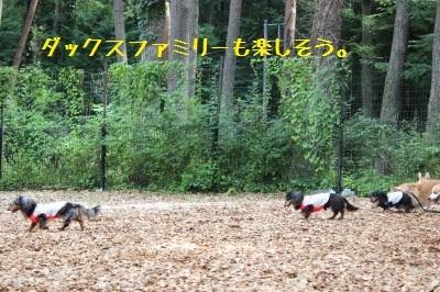 12IMG_2452.jpg