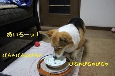 13IMG_9675.jpg