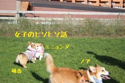 14IMG_3034.jpg