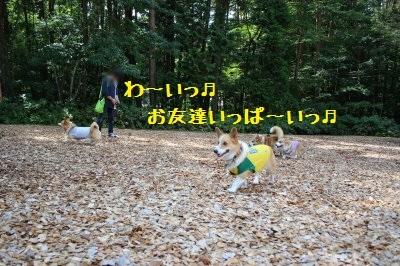 15IMG_2489.jpg