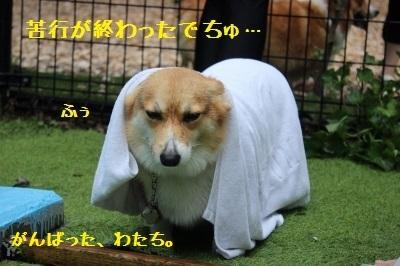 24IMG_2219.jpg