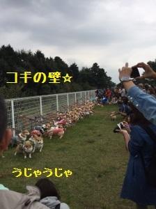 25_1230.jpg