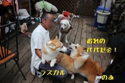 26IMG_2241.jpg