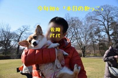 6__DSC_0035.jpg