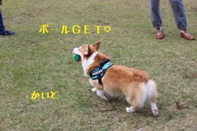 7IMG_3351.jpg