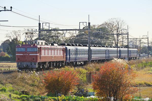 161202higahasu-kai9135.jpg