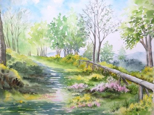 エニシダが咲く丘