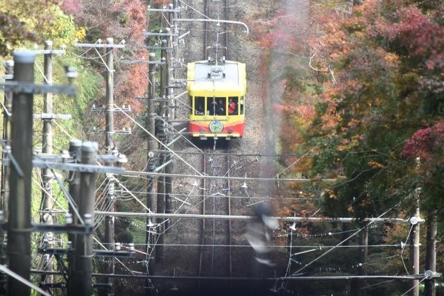 高尾山201611010101011000102