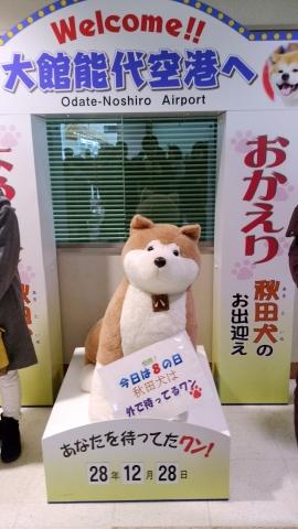 秋田犬2016120000000000