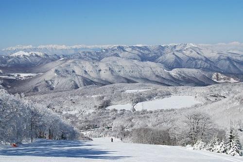 白樺国際全景