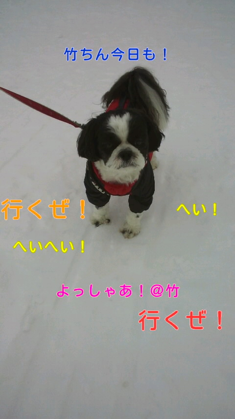 moblog_27393220.jpg