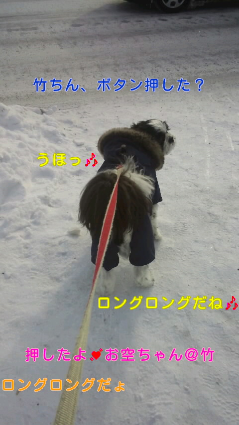 moblog_48b61ea6.jpg