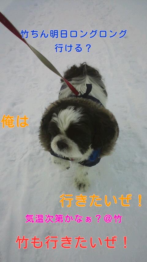 moblog_50b4d118.jpg