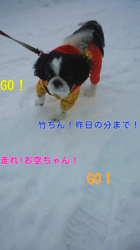 moblog_51fea1ca.jpg