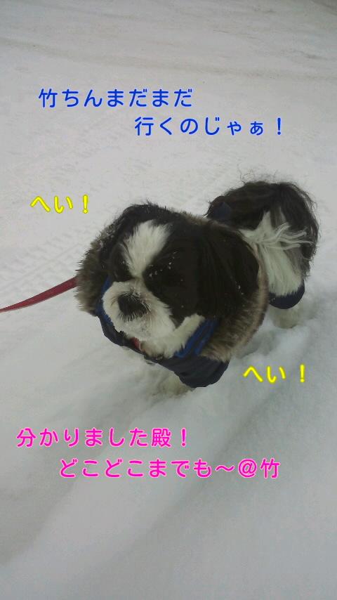 moblog_6fe7093a.jpg