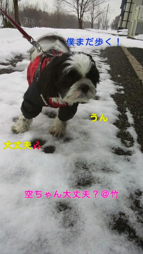 moblog_8408e4e8.jpg
