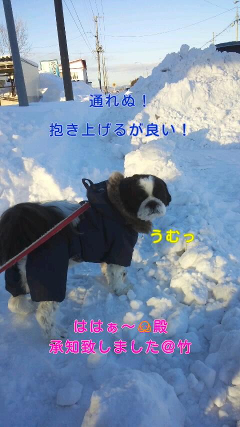 moblog_9503d684.jpg