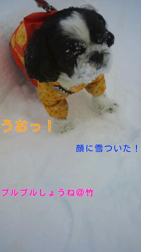 moblog_98cd3b11.jpg