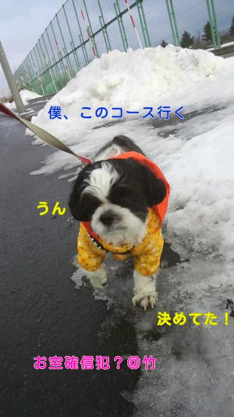 moblog_a12d683d.jpg
