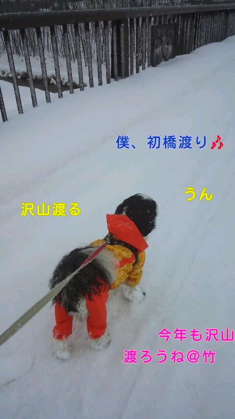 moblog_e6e646ee.jpg