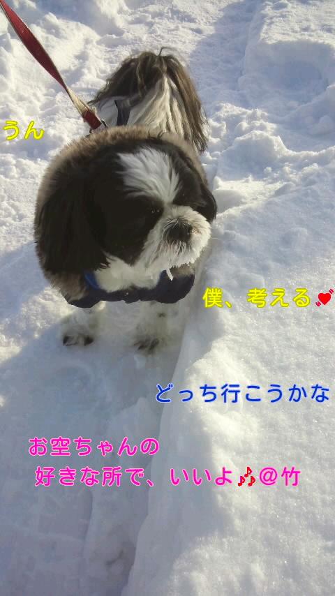 moblog_f3508546.jpg
