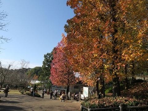 161204b_浜松市動物園3