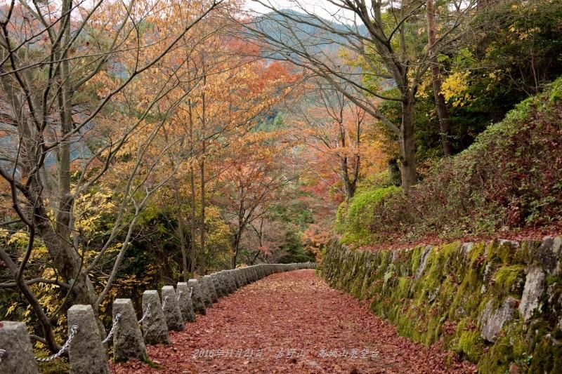 高城山展望台(吉野山)