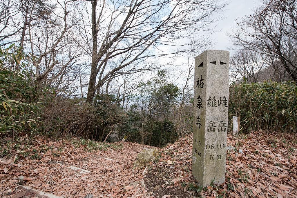 20170131 二上山登山 (6)