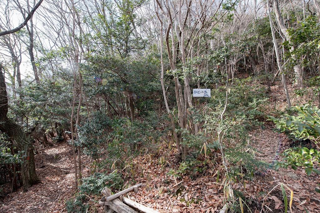20170131 二上山登山 (11)