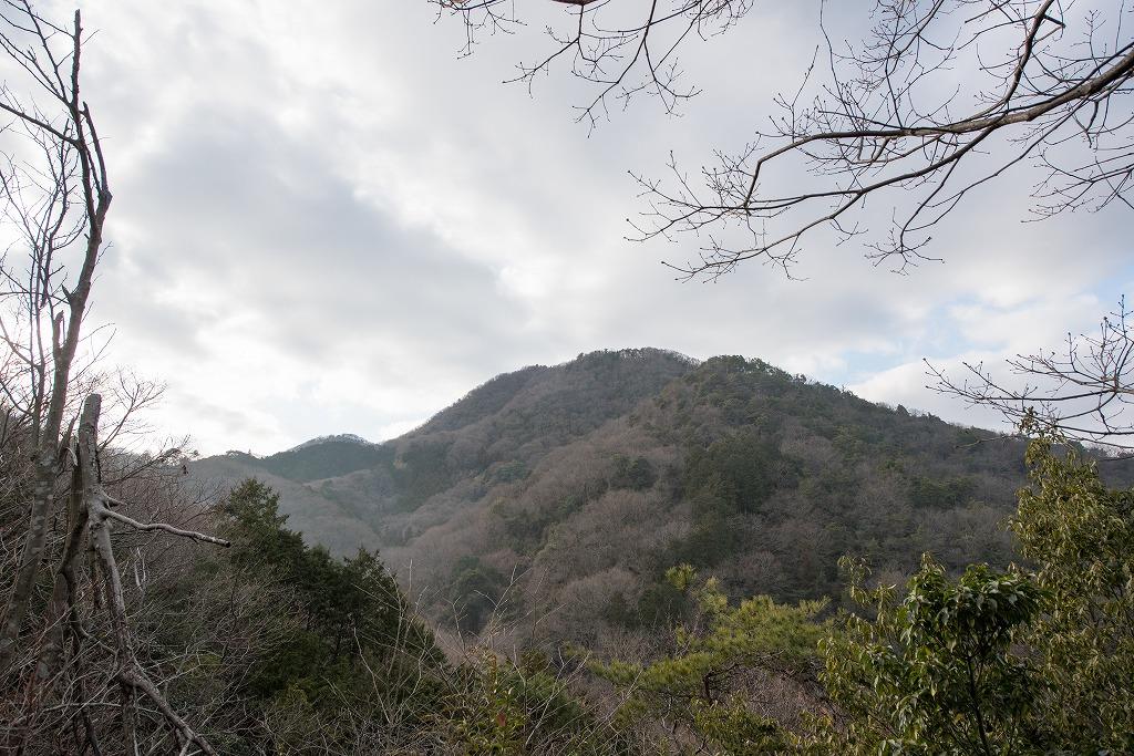 20170131 二上山登山 (14)