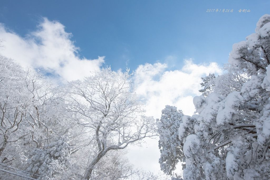 20170126 金剛山 雪山登山 (5)