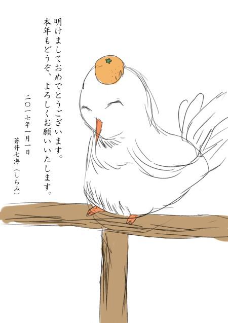 今年こそ出番があるはずの白鳩