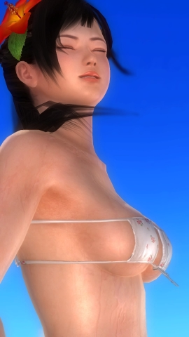 DEAD OR ALIVE 5 Last Round_20170104223351
