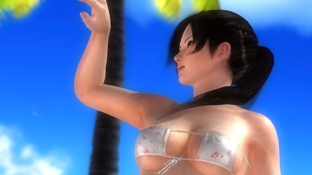 DEAD OR ALIVE 5 Last Round_20170104223422